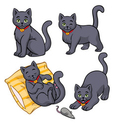 Cute russian blue cat set vector