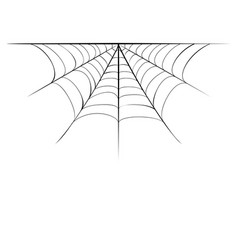 Decorative spider web border vector