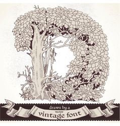 Fable forest hand drawn by a vintage font - D vector image