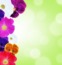 Flower Border With Bokeh vector image