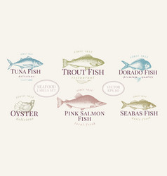 Hand drawn fish and seafood labels set in retro vector