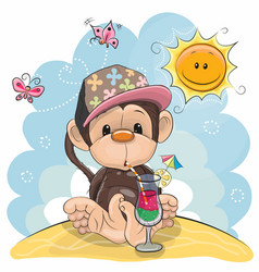 monkey on the beach vector image