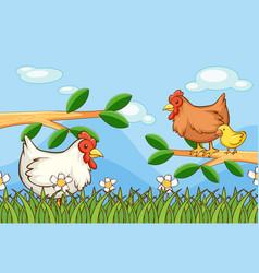 Scene with chickens in garden vector