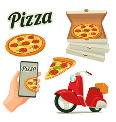 set delivery pizza color flat vector image