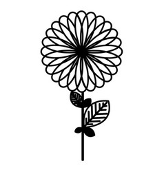 figure flower with some petals icon vector image