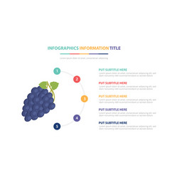 blue grape infographic template concept with five vector image