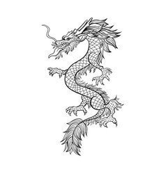 Chinese dragon hand drawn contour vector