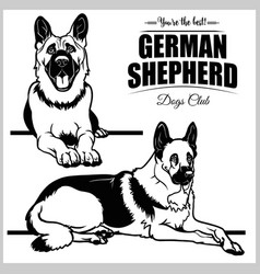 German shepherd - set isolated vector