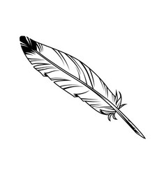 vintage monochrome feather pen with ink vector image