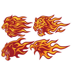 wild animals flaming flame heads set vector image