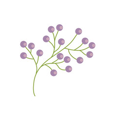 branch flower wild image vector image