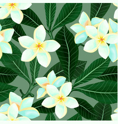 seamless pattern with frangipani plumeria flowers vector image vector image