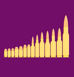 different types of bullets in row on purple vector image