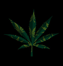 marijuana leaf on black vector image
