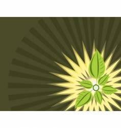 leaf decoration vector image vector image