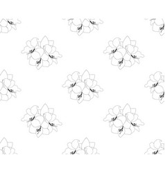 Amaryllis seamless on white background vector
