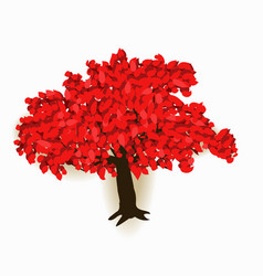 autumn tree with red leaves autumn image vector image
