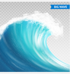 Big wave on transparent background vector
