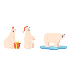 christmas white bear with gift wear santa claus vector image