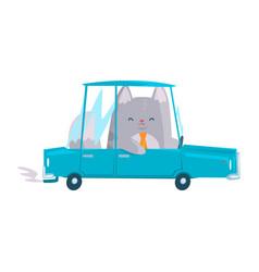 cute businessman cat driving car funny animal vector image