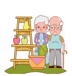 Cute grandparents couple cartoon vector