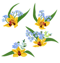 Drawing orchid flowers vector