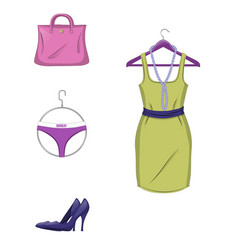 elegant set of female clothes and accessories i vector image