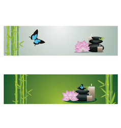 flower and zen stones banner vector image