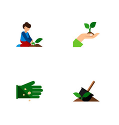 Icon flat sow set of plant woman legume and vector