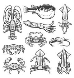 Lobster squids crab shrimp fugu seafood fish vector