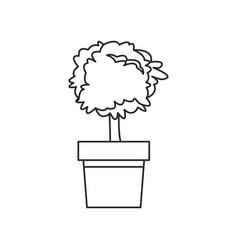 Plant pot tree natural decoration outline vector