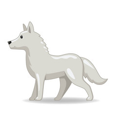 Polar wolf animal standing on a white background vector