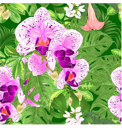 seamless texture tropical flowers orchid vector image