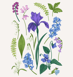 set with spring flowers vector image