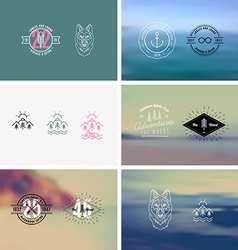 Trendy Retro Vintage Insignias vector