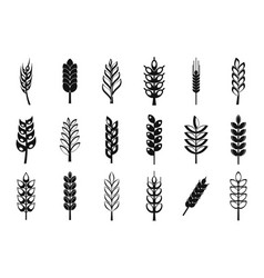 Wheat icon set simple style vector