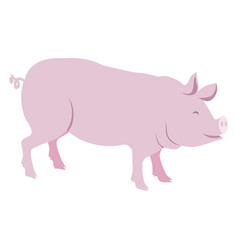 pink pig isolated on white vector image