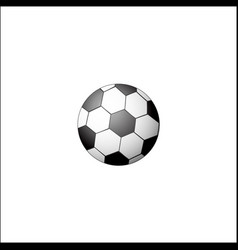 traditional black and white soccer football ball vector image vector image
