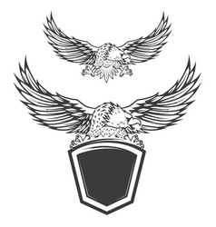 eagle on shield isolated on white background vector image