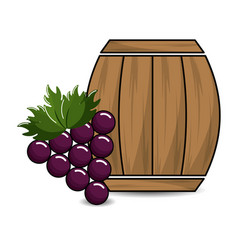 Barrel of wine with grape icon vector