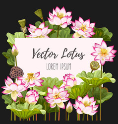 card with lotus vector image