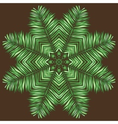 Circular pattern of palm leaves on a brown vector