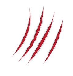 Claws scratch on paper background damage vector