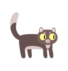 gray funny cat cartoon character vector image