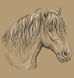 Horse portrait-12 on brown background vector