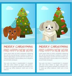 merry christmas pine tree set vector image