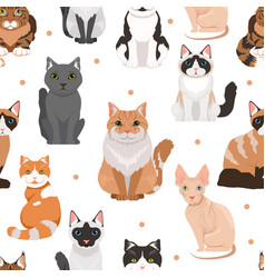 seamless pattern of cute cats colored vector image