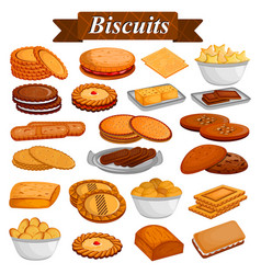 set of yummy assorted cookies and biscuit food vector image