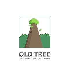 Old tree logo template vector image vector image