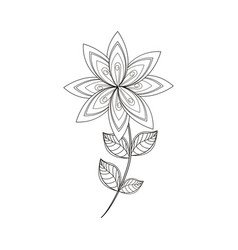 lilac flower decoration line vector image vector image
